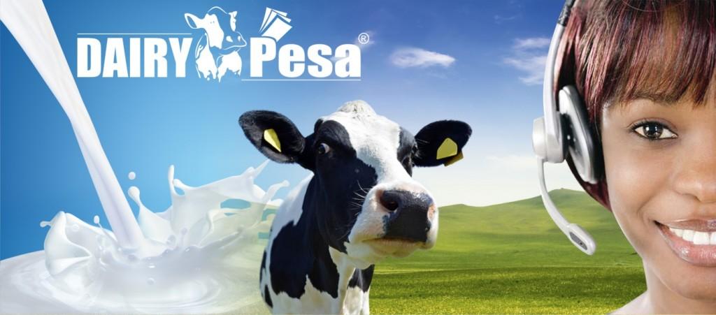 Contact Dairy Pesa