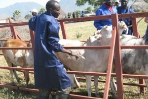 southsudan-vaccination_torit018
